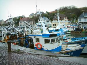 Port-en-Bessin - Quay, trawlers (boats) of the fishing port and houses