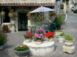 Poudenas - Flower pots in front of a house of the village