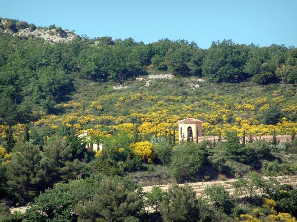 Provence landscapes - Building, trees and vegetation