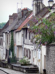 Provins - Facade of houses and blooming tree