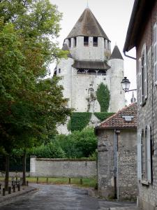 Provins - César tower (keep, watchtower) with its corner turrets, trees and houses of the upper town