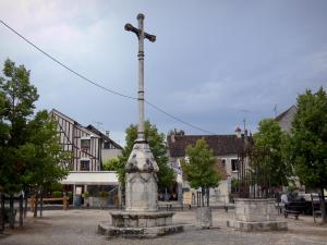 Provins - Place du Châtel square: Cross of Changes, wells, trees and houses