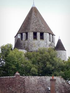 Provins - César tower (keep, watchtower), trees and roof of a house
