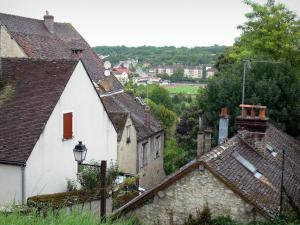 Provins - Roofs of houses in the city