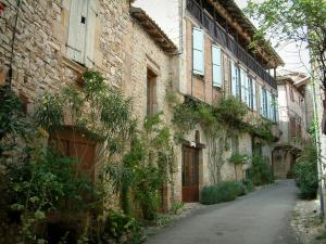 Puycelsi - Narrow street and houses of the village (Albigensian fortified town) with shrubs, rosebushes, flowers and plants