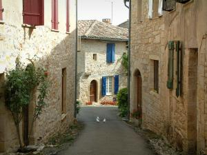 Puycelsi - Narrow street with doves and stone houses decorated with flowers