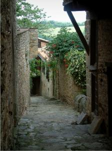 Puycelsi - Paved sloping narrow street with its houses decorated with plants