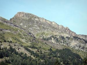 Pyrenees National Park - Mountain peak and fir
