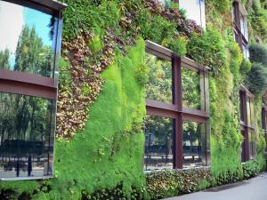 Quai Branly museum - Green wall of the museum