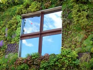 Quai Branly museum - Window and green wall of the museum