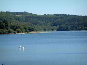 Raviège lake - Lake with yellow buoys, shore, trees and forest (Upper Languedoc Regional Nature Park)