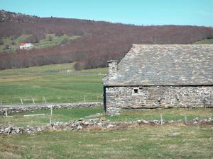 Regional Natural Park of the Ardèche Mountains - Bourlatier farm: stone barn with a slate roof of the Bourlatier memorial farm and its surrounding landscape; in the town of Saint-Andéol-de-Fourchades, in the Ardèche mountains