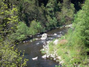 Regional Natural Park of the Ardèche Mountains - Eyrieux valley: trees along River Eyrieux