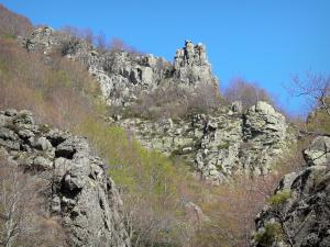 Regional Natural Park of the Ardèche Mountains - Rocks in the middle of a forest