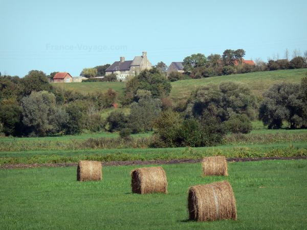 Regional Nature Park of Cotentin and Bessin Marshes - Haystack in a meadow, trees and farm (houses)