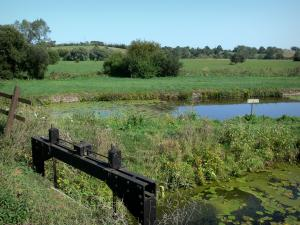 Regional Nature Park of Cotentin and Bessin Marshes - Vire et Taute canal, meadows and trees