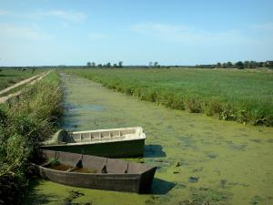 Regional Nature Park of Cotentin and Bessin Marshes - Canal lined with meadows, moored boats