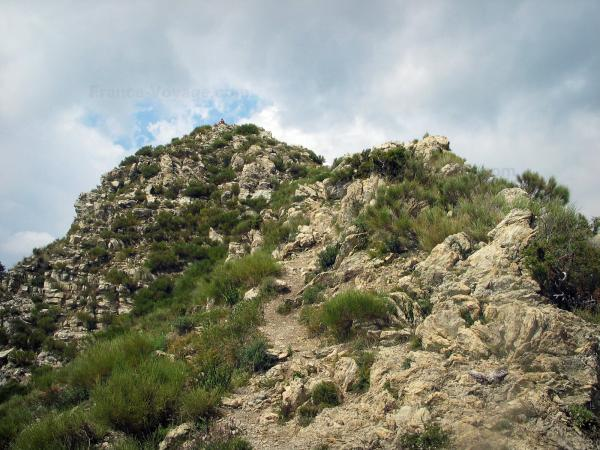 Regional Nature Park of Mercantour - Nature park: rocky crest