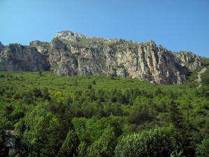 Regional Nature Park of Mercantour - Nature park: rock faces and trees