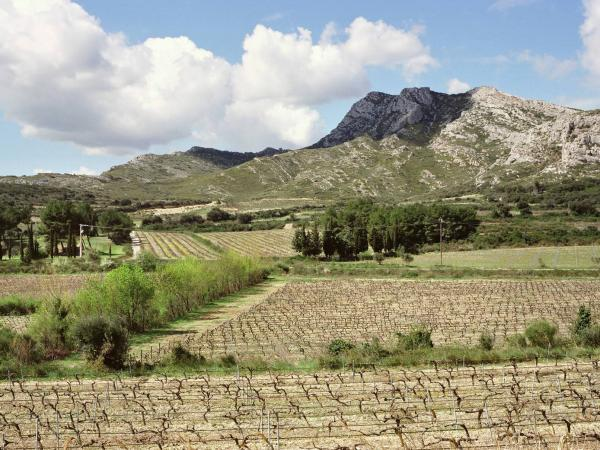 Der regionale naturpark der alpillen f hrer tourismus for Info regionale bouche du rhone