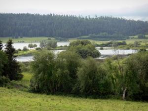 Remoray lake - National Nature reserve: natural lake, shores, trees, prairies and forest in background