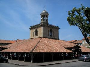 Revel - Medieval fortified town: covered market hall topped by a bell tower and houses of the central square, in the Cocagne land