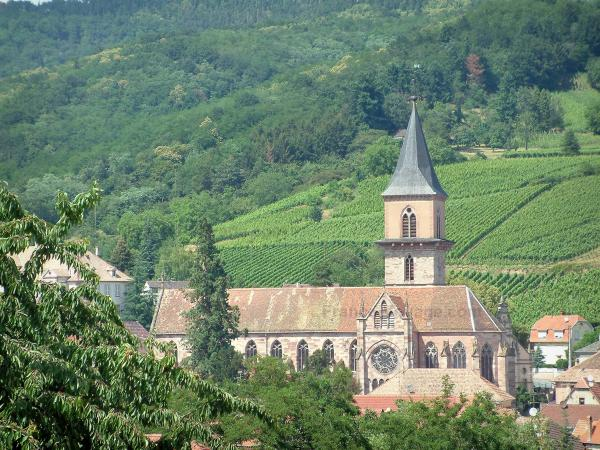 Ribeauvillé - Saint-Grégoire church and houses in the city, hill covered by vineyards and trees in background