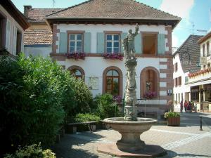 Ribeauvillé - Square with fountain, plants and houses decorated with geranium flowers