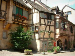 Riquewihr - Old timber-framed houses decorated with flowers and plants