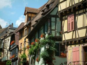 Riquewihr - Houses with colourful facades (yellow, green, orange, blue) and windows decorated with geranium flowers