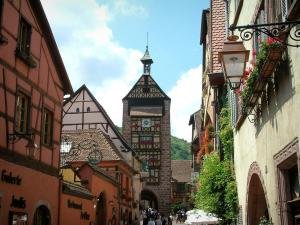 Riquewihr - Colourful half-timbered houses decorated with flowers and creepers, superior gateway (Obertor) in background