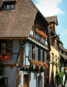 Riquewihr - Half-timbered houses, colourful facades (blue, yellow, green) and in flower-bedecked windows (geranium)