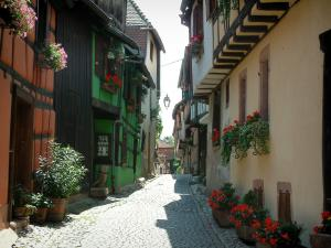 Riquewihr - Narrow paved street decorated with flowers, half-timbered houses decorated with flowers