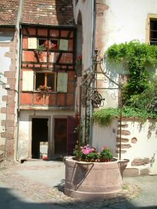 Riquewihr - Flower-bedecked well and houses decorated with flowers and creepers