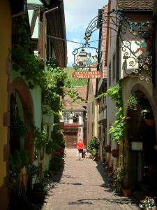 Riquewihr - Narrow paved street lined with houses decorated with flowers, facades decorated with forged iron shop signs