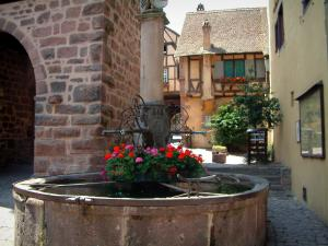 Riquewihr - Flower-bedecked fountain (geranium) and half-timbered houses