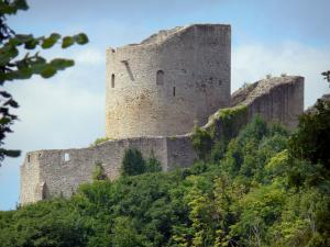 La Roche-Guyon - Keep of the castle surrounded by greenery