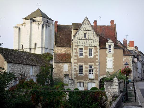 La Roche-Posay - Station thermale : donjon et maisons
