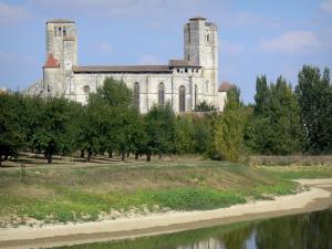 La Romieu collegiate church - Saint-Pierre collegiate church, orchard and pond