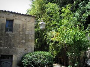La Roque-Gageac - Facade of a house, lamppost and tropical vegetation, in the Dordogne valley, in Périgord