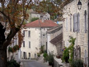 Roquecor - Sloping street, tree and facades of houses in the village; in Quercy Blanc
