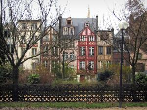 Rouen - Timber-framed houses, lamppost, trees and shrubs