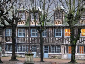 Rouen - Aître Saint-Maclou: inner courtyard, trees, calvaire, and timber-framed building