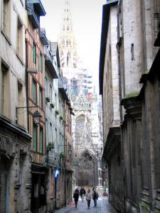 Rouen 60 afbeeldingen met hoge resolutie - Saint maclou tapijt van gang ...