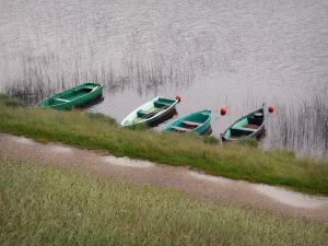Les Rousses - Les Rousses lake: boats on the water, shore and wild flowers; in the Upper Jura Regional Nature Park