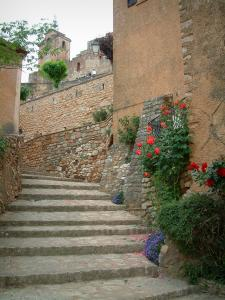 Roussillon - Narrow street (stairway) with a house decorated with rosebushes, plants and flowers, belfry (tour) in background