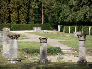 Royaumont abbey - Remains of the church: fragments of columns and capitals