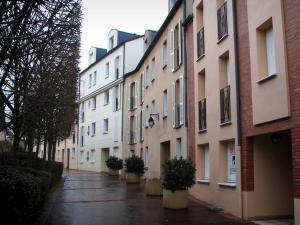 Rueil-Malmaison - Houses, trees and shrubs in jars
