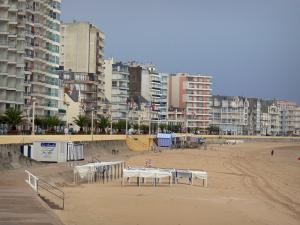 Les Sables-d'Olonne - Sandy beach, elevation, walkway decorated with palm trees and buildings of the seaside resort