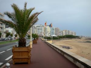 Les Sables-d'Olonne - Walkway decorated with palm trees, beach, street and buildings of the seaside resort